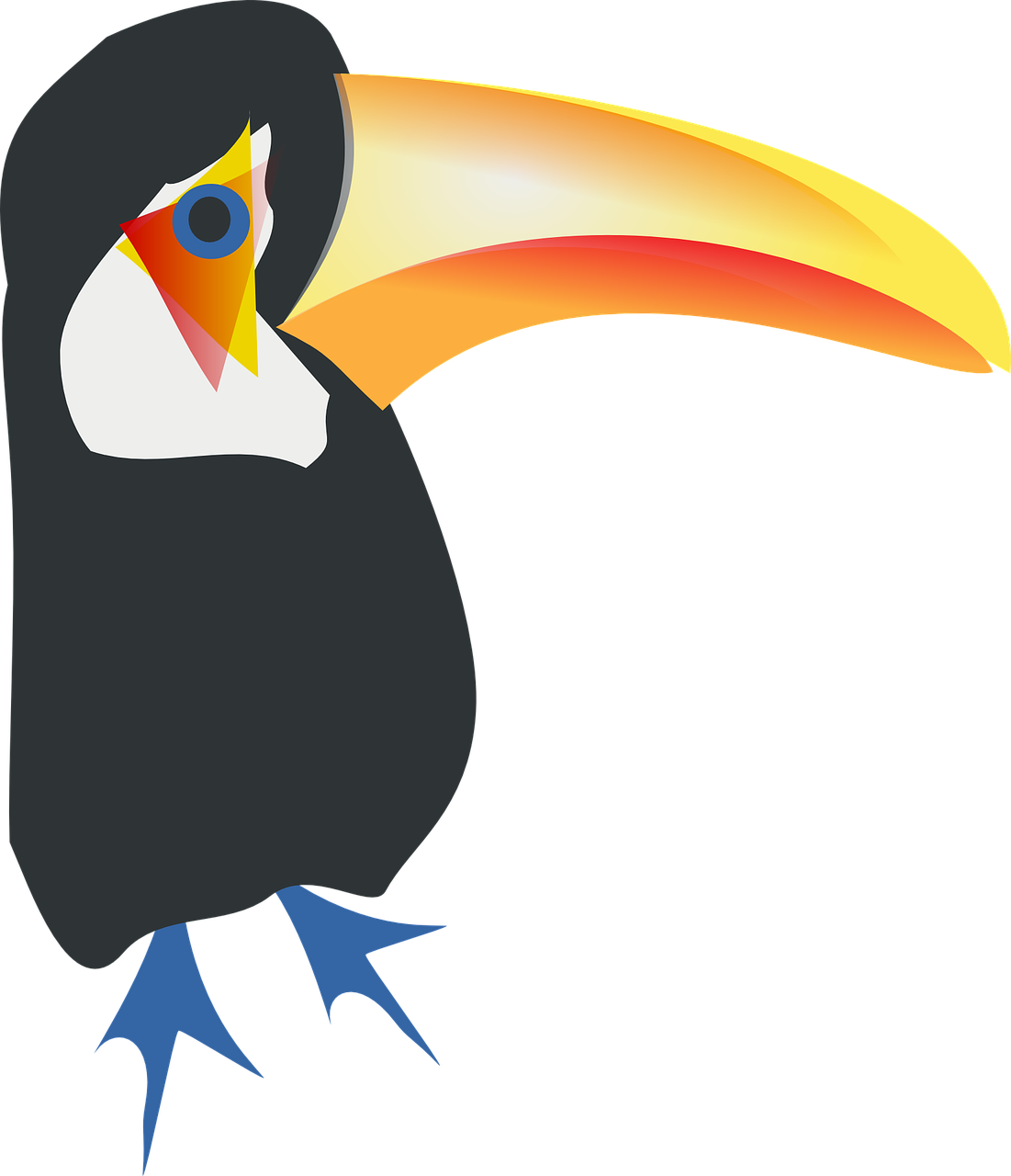 Toucan Animal Bird