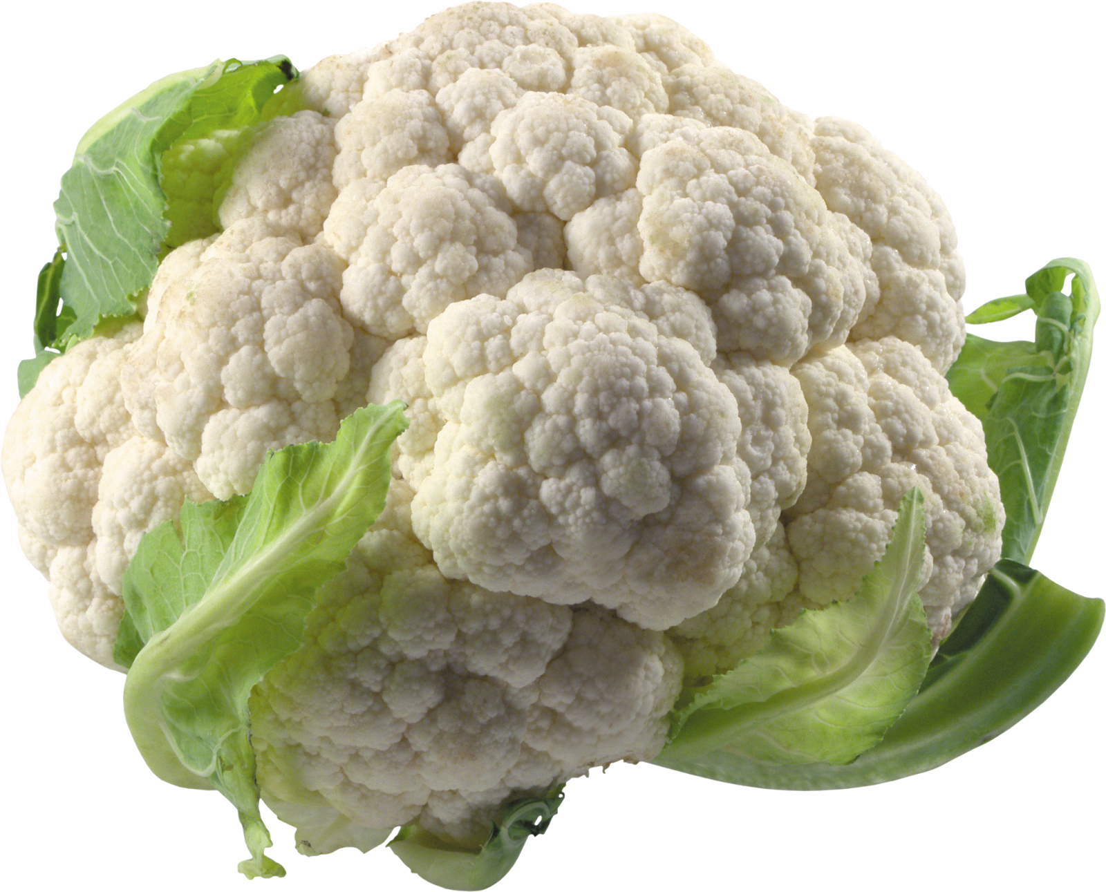 Painting Cauliflower