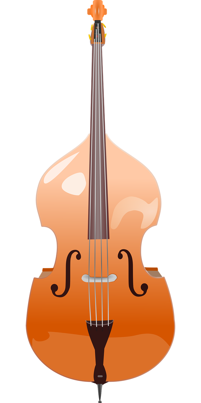 Double Bass Stringed Instrument