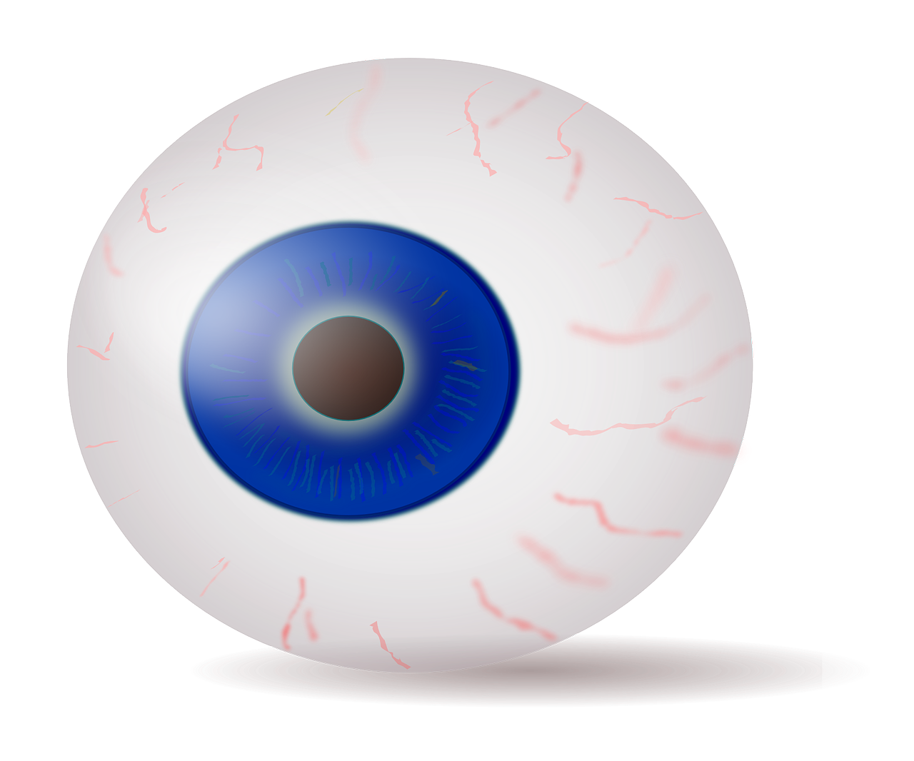 Eye Eyeball Iris Blue Stare