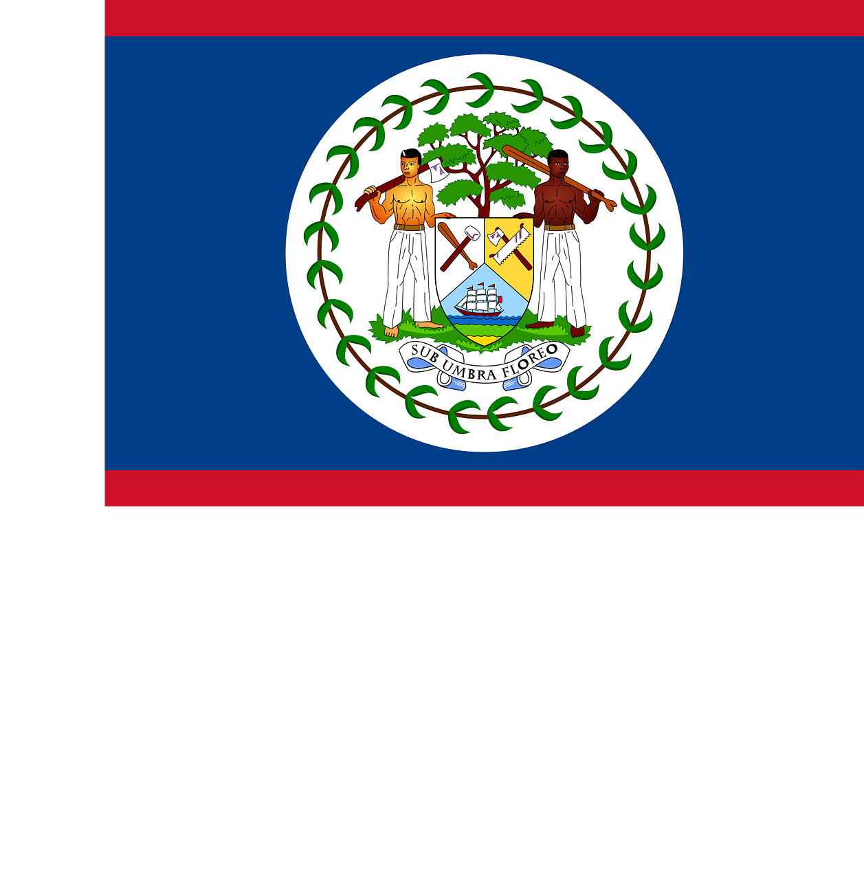 Belize Flag National Flag Nation