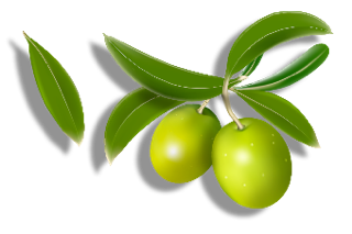 Olives Clipart