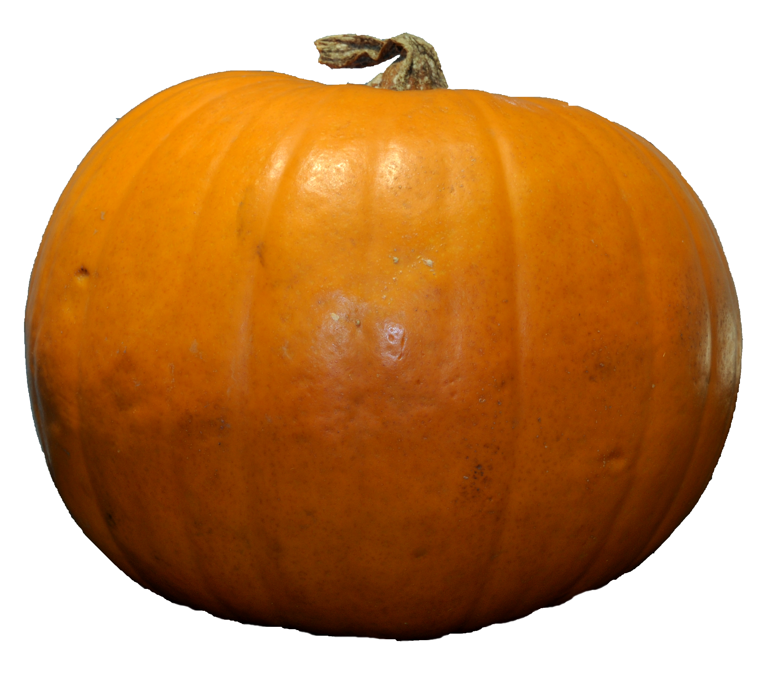 Shape Pumpkin