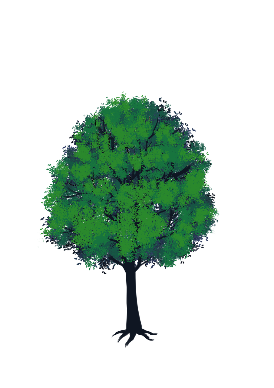 Tree Green Anime Nature Plant Png Picpng